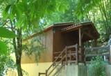040208 - maison elina - piscine - proche sarlat (31web)