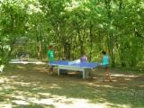 La Truffiere - piscine couverte et chauffée - proche sarlat et lot quercy12