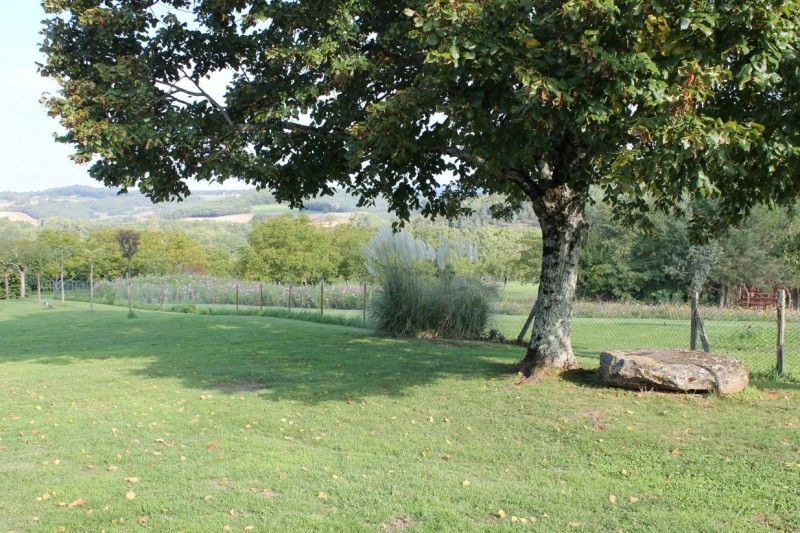 040238-les roses tremieres- maison de campagne 4-6 pers - vallée  de la dordogne (29)